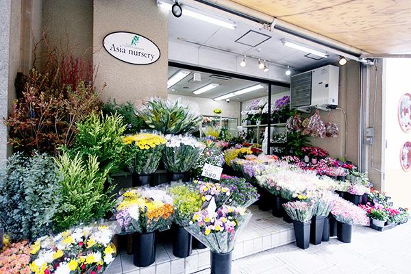 アジアナーセリー中央店